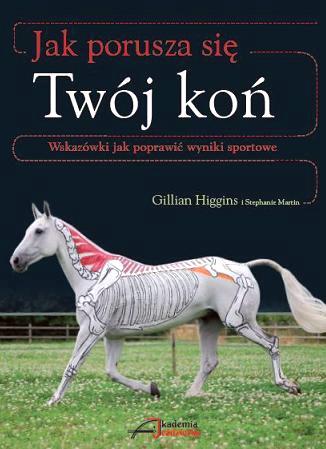 Zdjęcie Akademia Jeździecka Jak porusza się Twój koń