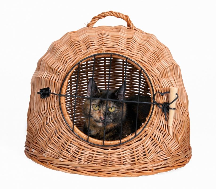 Trixie Kosz wiklinowy dla kota legowisko i transporter w jednym ø 50 cm