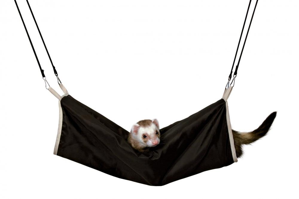 Zdjęcie Trixie Tunel huśtawka dla fretki  brązowo/beżowy ø 20 × 45 cm