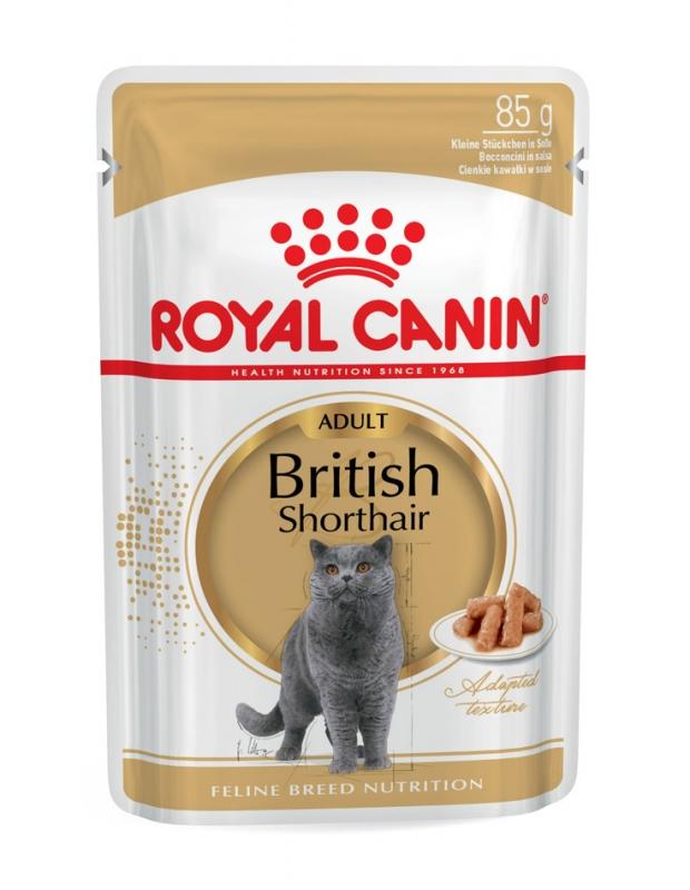 Royal Canin Saszetka British Shorthair moderate energy 85g