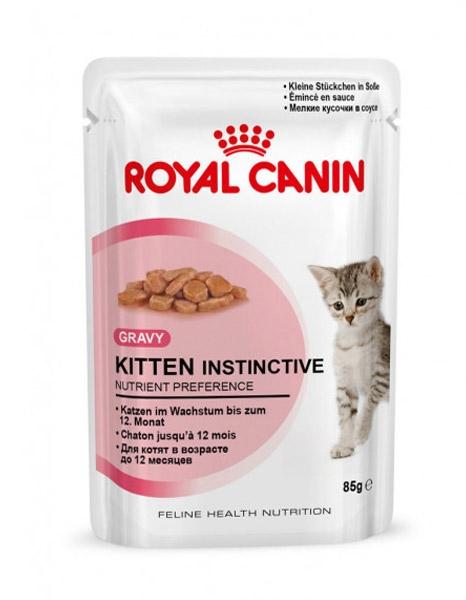 Royal Canin Saszetka FHN Kitten  w pasztecie 85g