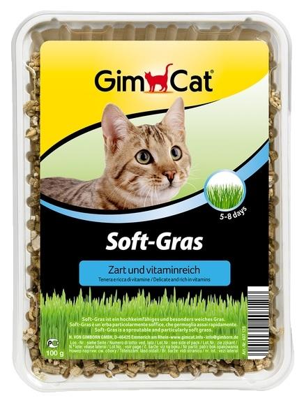 Gimcat Kocia trawka do wysiewu Soft-Grass ekstra miękka i gładka 100g